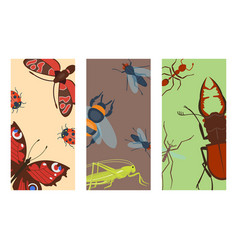 Colorful insects icards wildlife wing detail vector