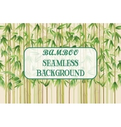 Seamless Background Bamboo Plants vector image