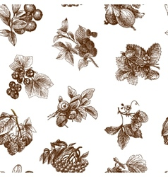 Sketch berries seamless pattern vector