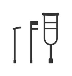 Crutches and Canes vector image vector image