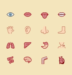 Body element color icon set 1 vector