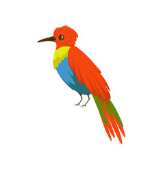 colorful bee eater bird vector image vector image