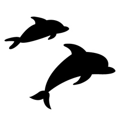 Dolphins on white background vector