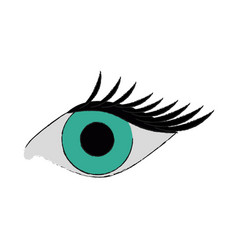 Single eye with lashes icon image vector