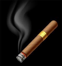 Smoldering cigar vector