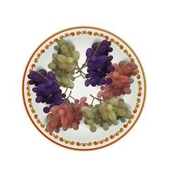 White plate full of grapes vector