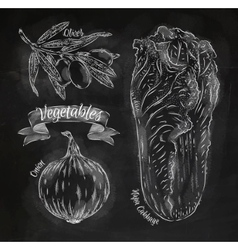 Vegetables onion napa cabbage olives chalk vector