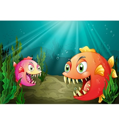 A small and a big fish vector image vector image