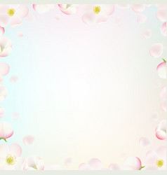 border with apple tree flowers vector image
