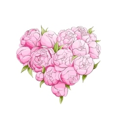 Bright peonies heart vector