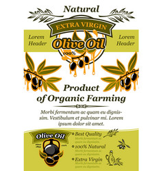 Olive oil banner of natural organic food design vector