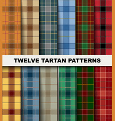 twelve seamless set tartan pattern vector image