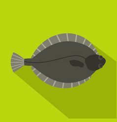 Flounder fish icon flat style vector
