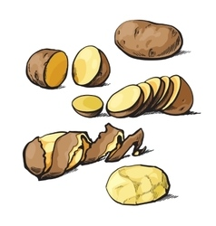 Set of cleaning potatoes and cut vector