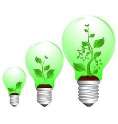 bulb and plant growth vector image