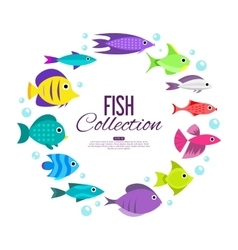 Cartoon fish collection background vector image