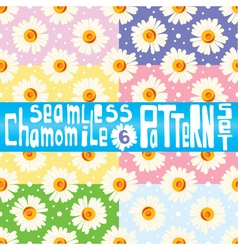 Chamomile pattern set with six seamless patterns vector image vector image
