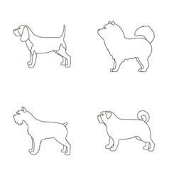 Chau chau levawa schnauzer pugdog breeds set vector