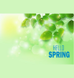 Fresh green leaves on natural background vector