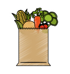 shopping bag with grocery vector image