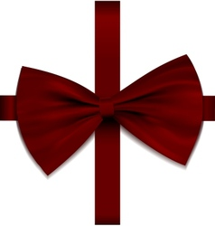 Bow on ribbon vector image