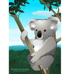Koala sitting in a gum tree in australia vector