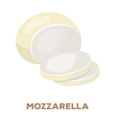 Mozzarelladifferent kinds of cheese single icon vector