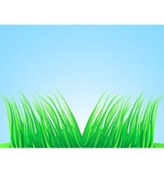 Wisps of lush grass vector