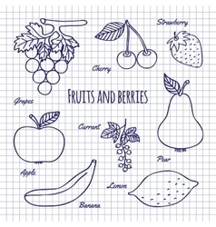 Hand draw fruits and berry vector image