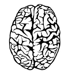 Hand drawn human brain vector