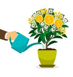 hand watering money tree vector image vector image