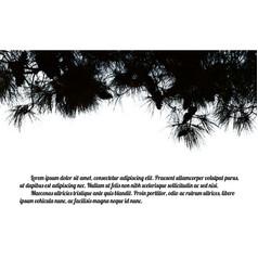 Pine branch tree vector