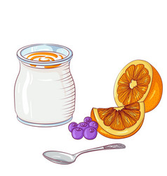 Yogurt with orange on white background vector