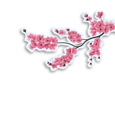 Japanese cherry branch cut out of cardboard with vector