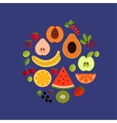 Fruit flat composition vector image
