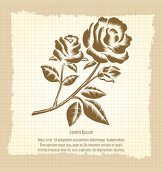 Vintage poster with roses engraving vector