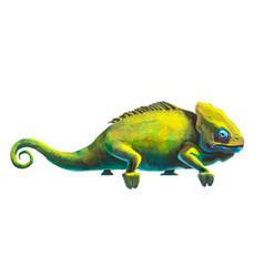 cute green chameleon on white vector image