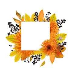 floral design card autumn orange gerbera flower vector image