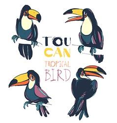 Tropical summerset with toucan birds ink splatter vector