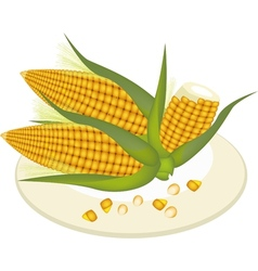 A plate of fresh corn and kernel corn vector