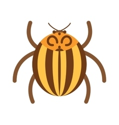 Beetle flat insect bug in cartoon style vector image