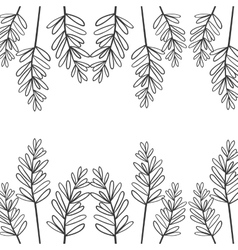 Edge of branches with oval leaves vector