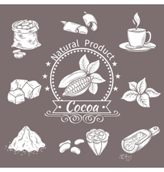 Decorative icons set cocoa vector