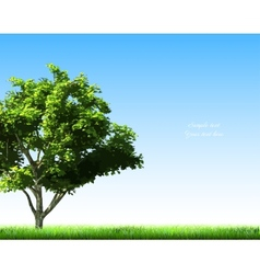 Summer background with grass and tree vector image