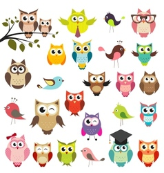Set of owls vector