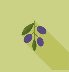 olive with leaves icon with long shadow vector image vector image