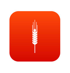 Stalk of ripe barley icon digital red vector