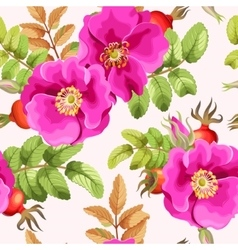 Seamless brier rose vector image