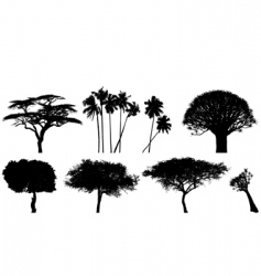 exotic trees vector image