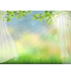 Summer background with curtain vector